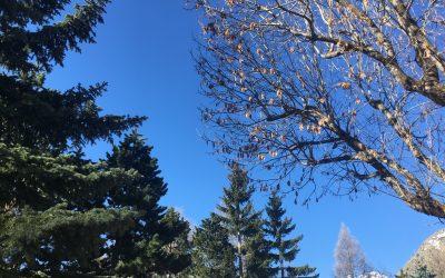 April – Stress Awareness Into Action
